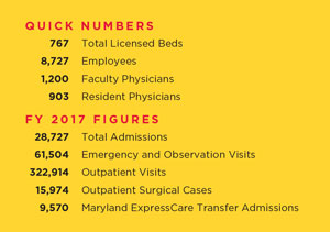 UMMC by the numbers